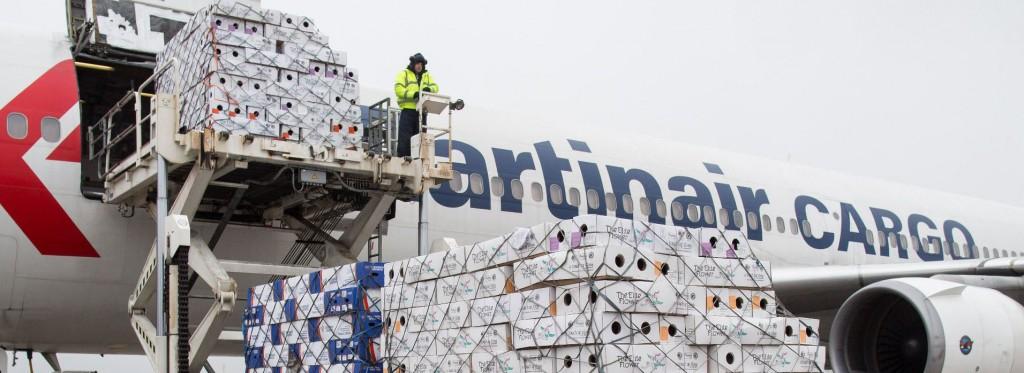 Martinair-Cargo_DEF-1024x373